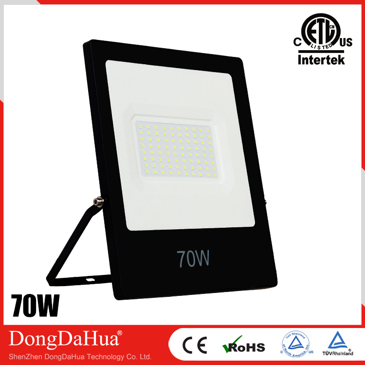 iPad-ETL Series LED Flood light